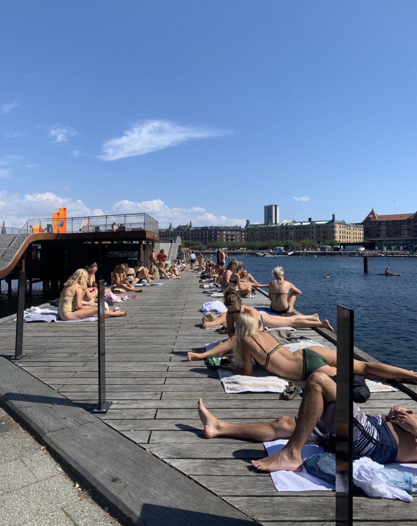 Вучето проверява плажуващите в Копенхаген