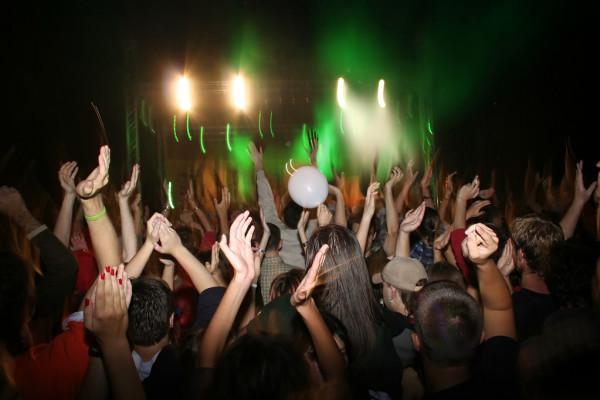 Датчани се забавляват на нелегални купони: Вучето дава поредния пример за  проявата на масовата човешка глупост